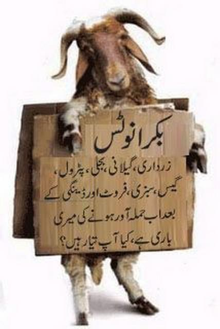 Funny Urdu Quotes by Bakra,
