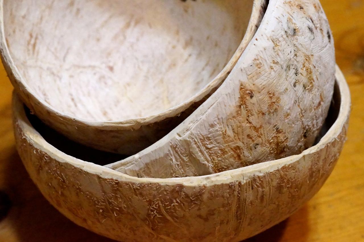 coconut bowls - photo #42