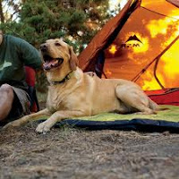Outdoor Dog Beds/Waterproof Dog Beds