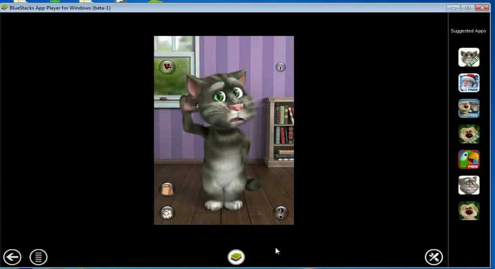 Talking Tom Cat Talking Tom Cat That 39 s it