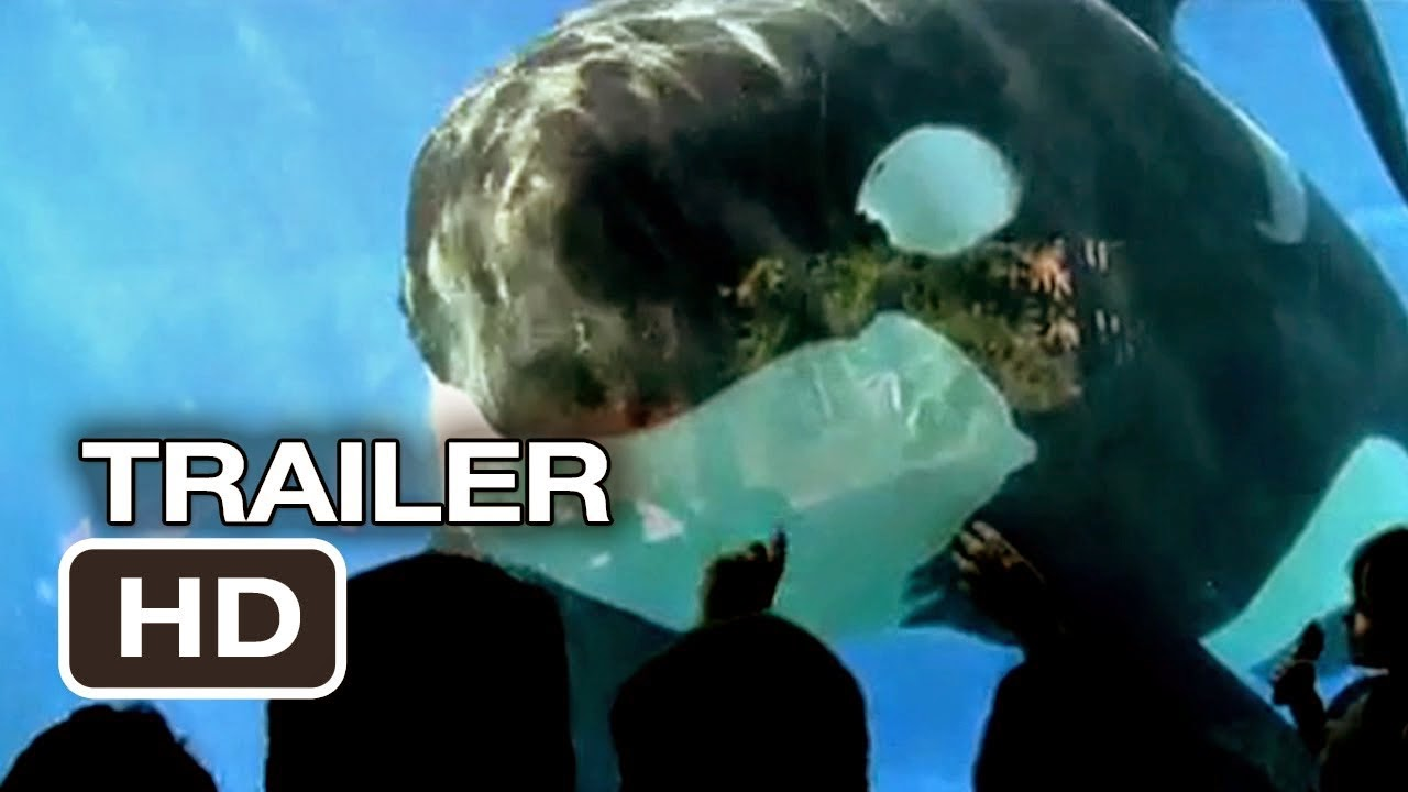 Click to watch 'Blackfish' trailer