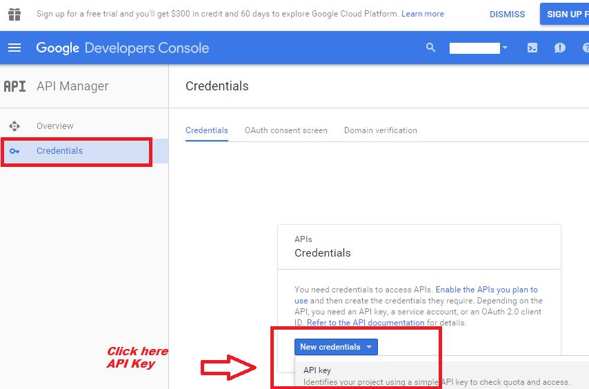 google api key for server applications