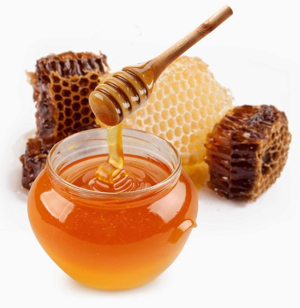 manfaat madu, khasiat madu