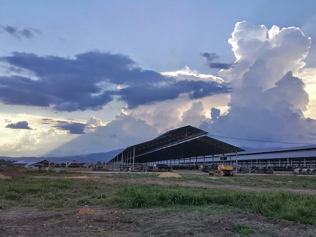 Yun Fook Resources Farm, Keningau, Sabah (2015)