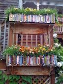 Livros: uma paixão
