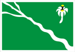Bandeira de Belo Jardim / PE