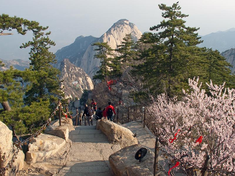 Sentier de randonnée au mont Hua (Chine)