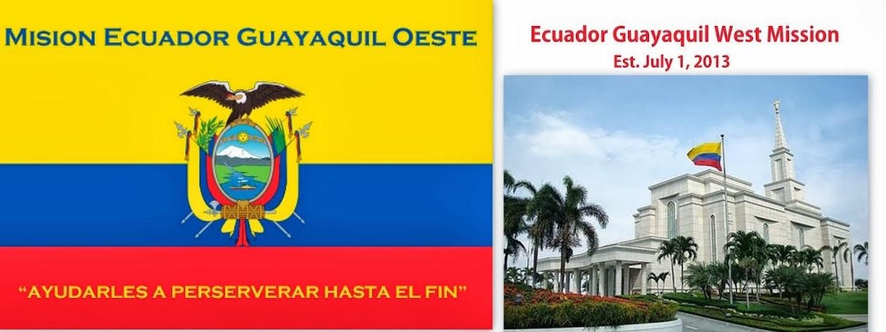 Mission Flag
