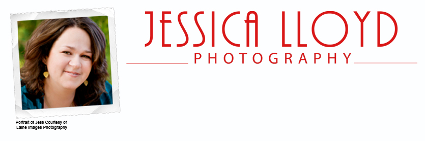 Jessica Lloyd Photography - Family Portraits  - Salt Lake City, Utah