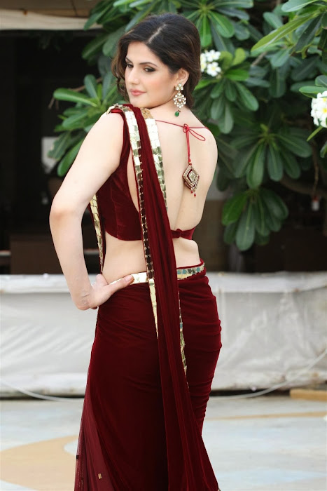 zarine khan glamorous in saree hot images