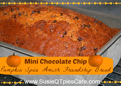 SusieQTpies Cafe: Chocolate Chip Pumpkin Spice Amish Friendsh Bread