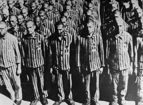 were concentration camps as brutal as No clean clothes were given out unless someone died and still those clothes were never washed labour camps were a brutal and  concentration camps were.