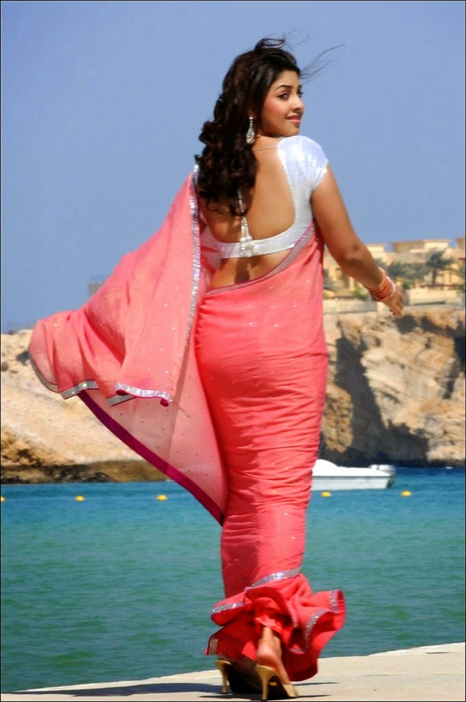Kajal Agarwal Hot Back Show In Nayak Richa Gangopadh...