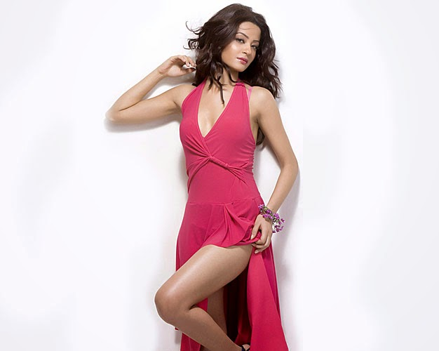 Hate Story 2 Heroine Surveen Chawla Hot and Bold HD Wallpapers