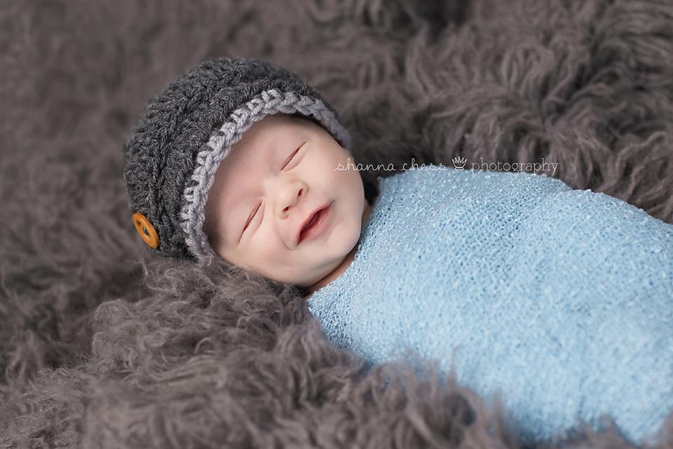 eugene, or newborn photography grey fur