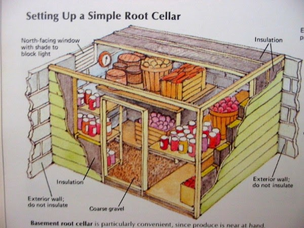 Building a Basement Root Cellar