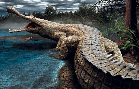 El cocodrilo mas grande de la tierra