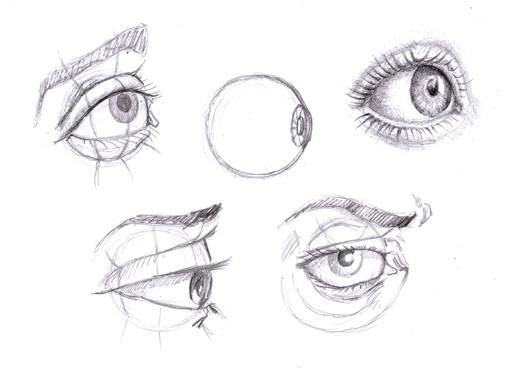 Eye Level Math Online   Eye Level