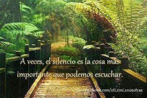 Frases Sobre El Silencio Para Reflexionar
