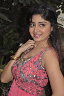 Poonam_Kaur_hot_Photos_At_Guest_Movie_Audio_Launch