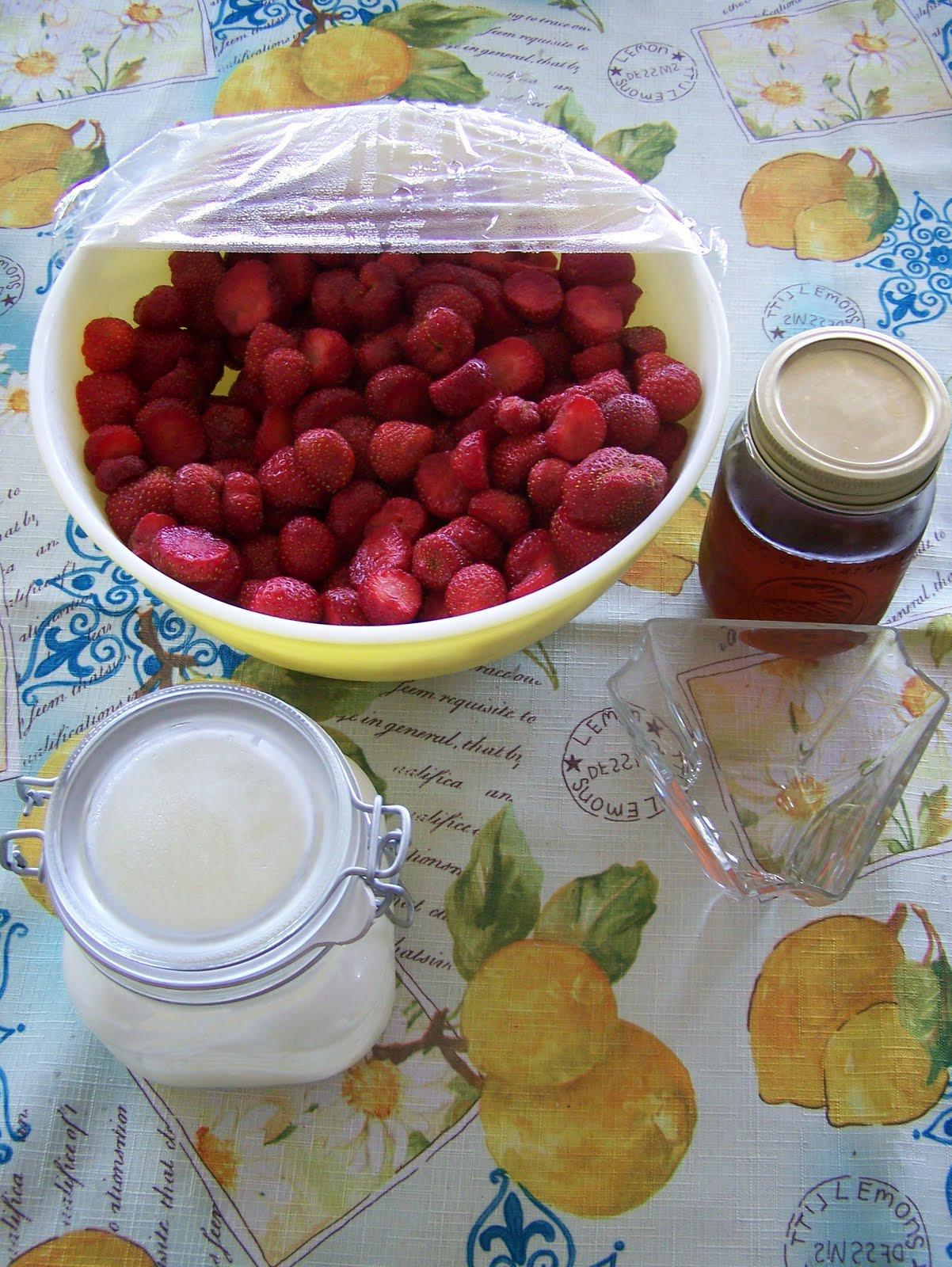 Le jour de la marmotte mmmmmm des fraises - Comment cueillir des fraises ...
