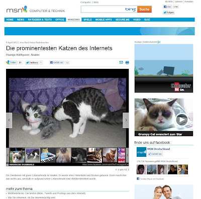 MSN Germany, Anakin The Two Legged Cat