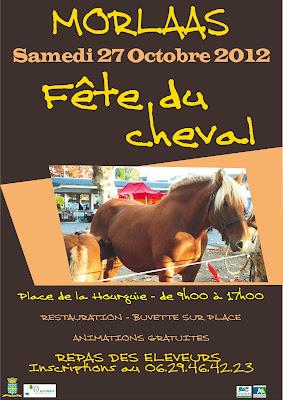 la fête du cheval à Morlaàs