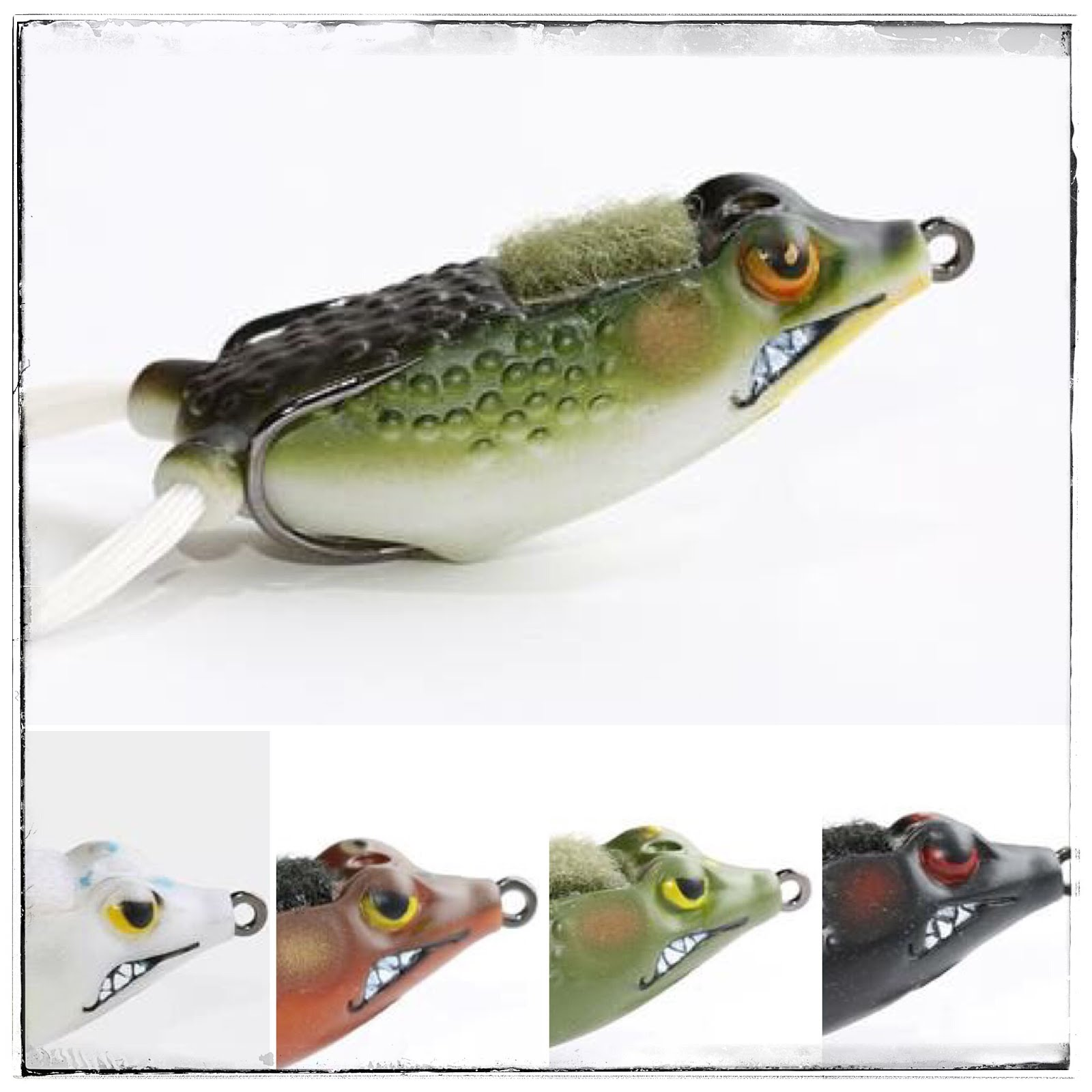 Bass junkies frog pond for Frog bait fishing