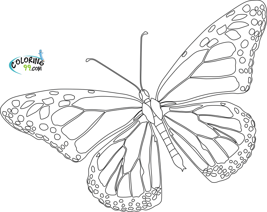 Color Number Butterfly Coloring Pages