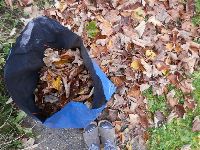 Making leaf mould. My Garden, November 2015. secondhandsusie.blogspot.co.uk #ukgardener #ukgardenblogger