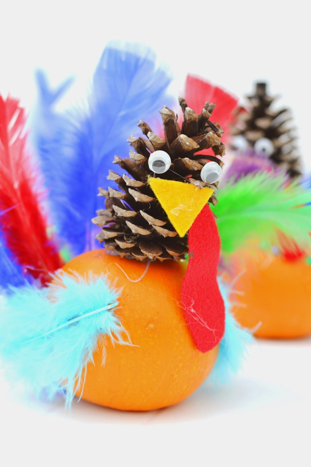 http://plentyofpaprika.blogspot.com/2014/11/pumpkin-pine-cone-turkey-craft.html