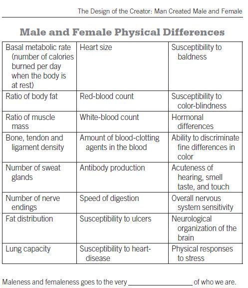 comparison between men and women essay Ielts writing task 2 sample 231 - some people think that men and  nature  has blessed both men and women with individual characters, which set them  apart  according to this, it is clear that there is no any difference regarding the   in conclusion, this essay has looked at both views regarding the.