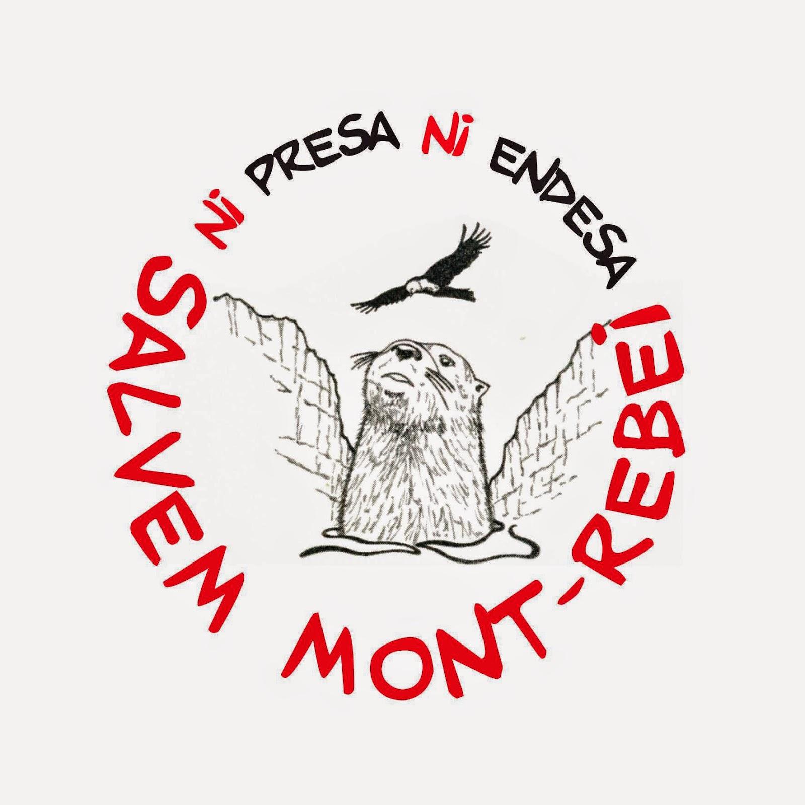 http://play.cadenaser.com/audio/040RD010000000129791/joan-vazquez-plataforma-salvem-mont-rebei-volem-per-escrit-declaracio-de-endesa-de-retirar-projecte/