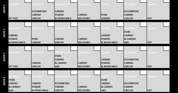 TREINO INSANITY BRASIL Calend rio INSANITY WORKOUT – Insanity Workout Sheet