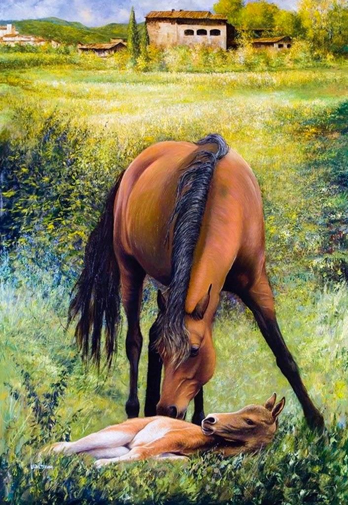 fotos-nuevas-de-caballo-al-oleo