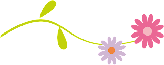Divider image of daisies / flowers.