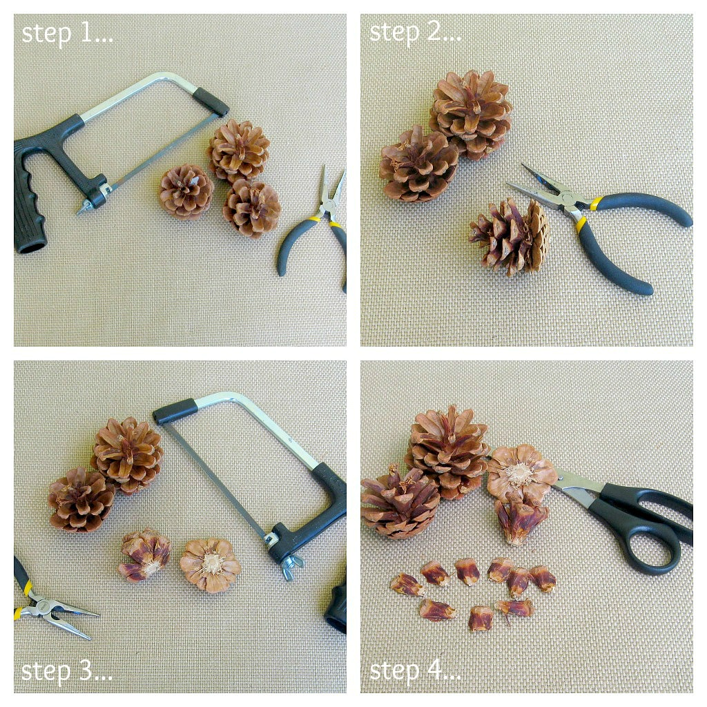 Pine cones for crafts - Cutting Pine Cone Steps