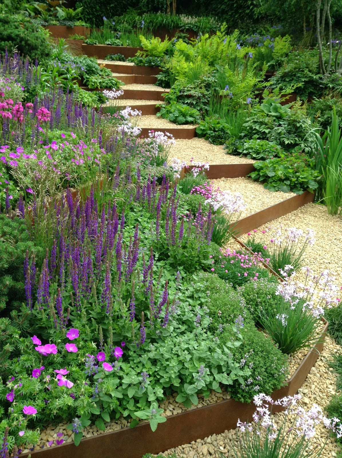 RHS Chelsea Flower Show - A Garden for First Touch at St. George by Patrick Collins - Nepeta, Salvia, Geranium, Thulbaghia, Gravel, Corten Steel - Silver Gilt - Photo by Noemi Mercurelli