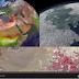 Imagenes las luces de navidad desde el espacio