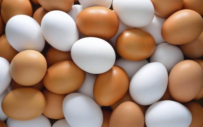 ไข่เป็ด ไข่ไก่ ประโยชน์ที่ได้ ต่างกันมั้ยมาดูกัน