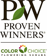 Proven Winners - Live plants
