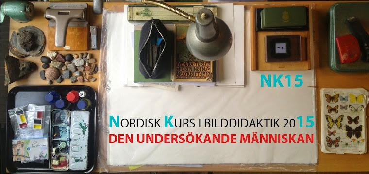 NK15 DEN UNDERSÖKANDE MÄNNISKAN