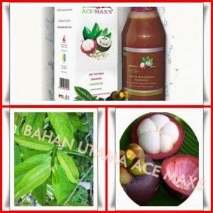 Obat Tradisional Penyakit Kardiovaskular