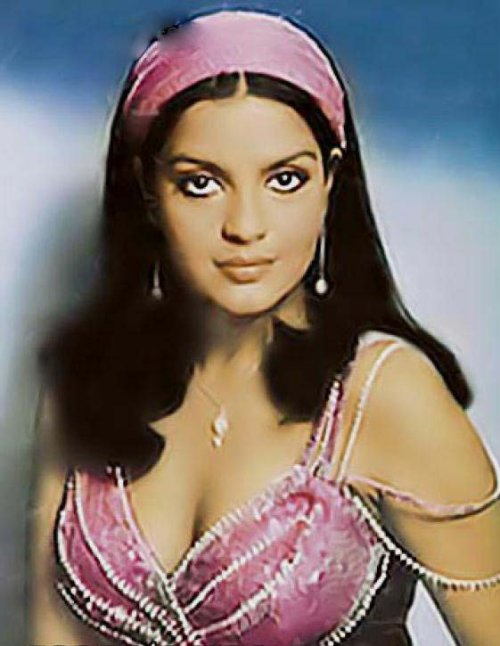 Zeenat Aman Net Worth