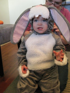 Easter Bunny Costume for Toddlers