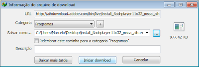 internet-download-manager-2013
