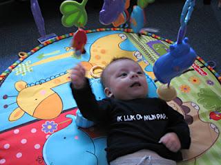 Fisher Price Baby Zoo Baby gym: een super-de-luxe babygym van Fisher-Price!