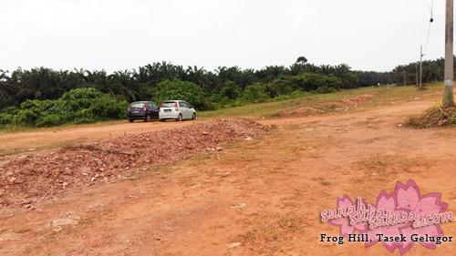 Frog Hill @ Bukit Katak, Tasek Gelugor