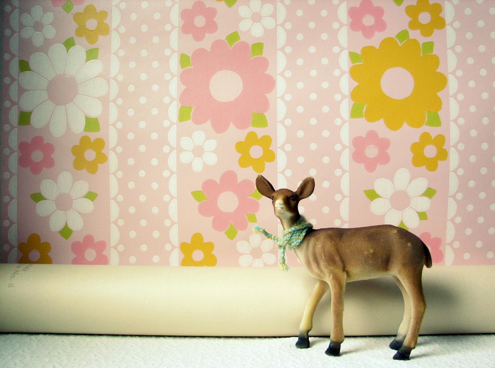 http://4.bp.blogspot.com/-h9K4a3Lv60Y/Tzi3kKUwTuI/AAAAAAAADDY/oQnz1bNyJHw/s1600/Pink+Daisy+Wallpaper+a.jpg