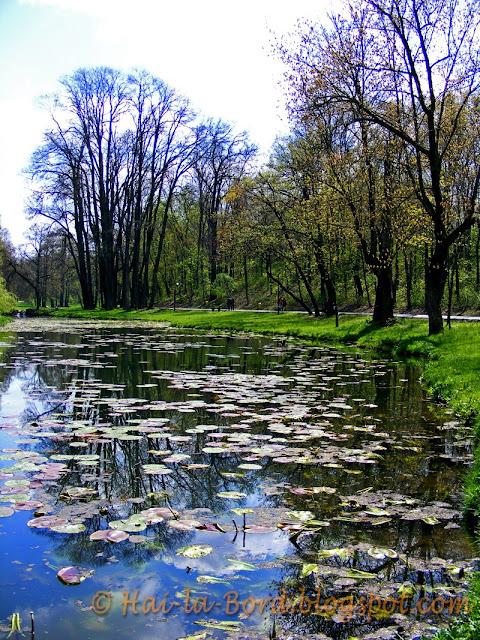 lac parc romanescu craiova
